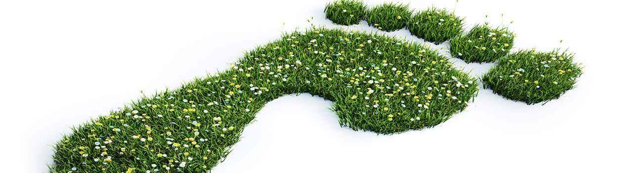 image of footprint made out of grass to symbolize carbon footprint